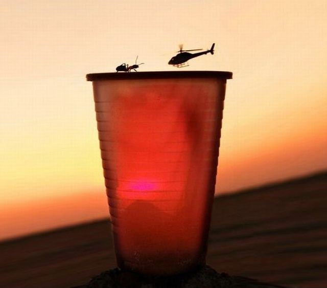 Helicopter and Ant