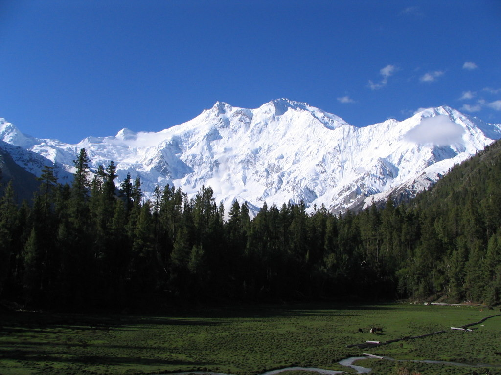 Nanga Parbat valley, Pakistan