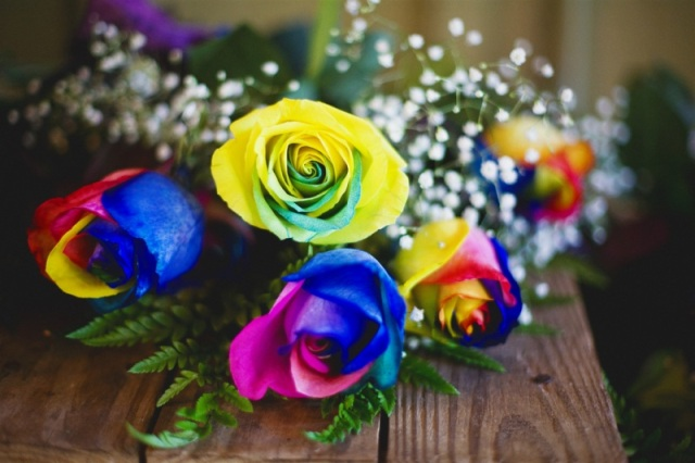 How to grow a rainbow rose naturally pickchur for Different color roses bouquet