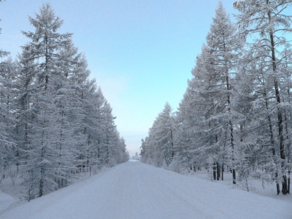 road to oymyakon