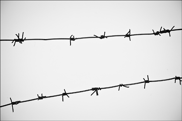Barbed wire in focus