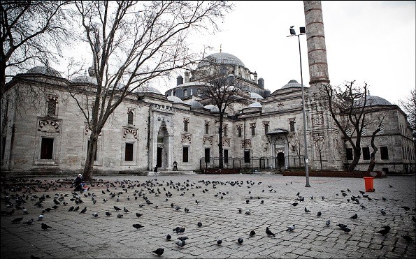 mosque and pigeons