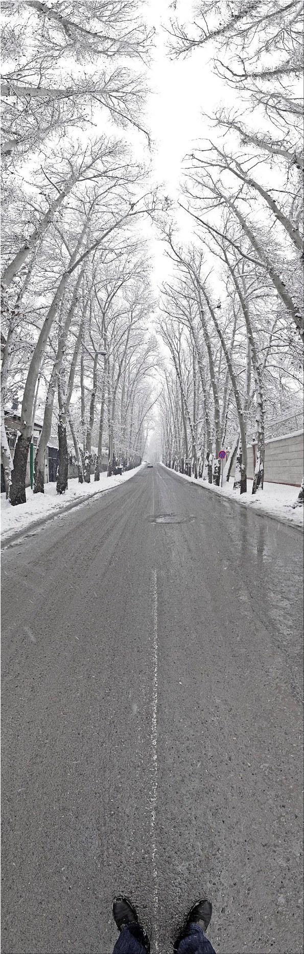 snow street long