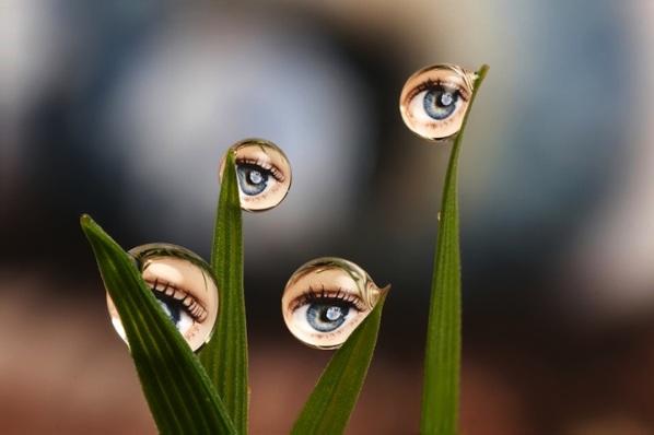 Amazing Water Drop Reflection Photography Pickchur