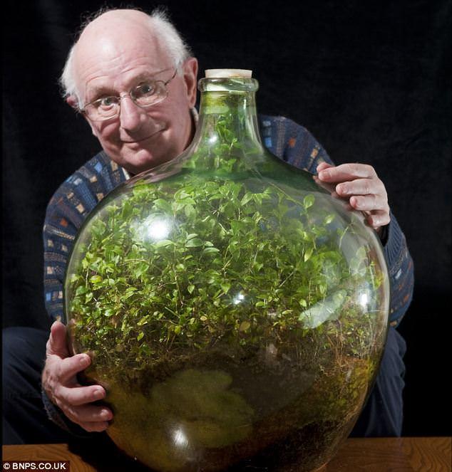 bottle_ecosystem