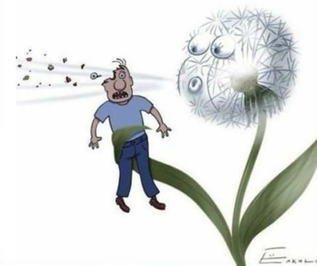 dandelion blowing human