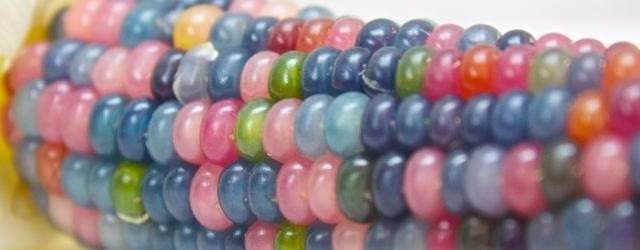 Colorful Glass Bead Corns_four