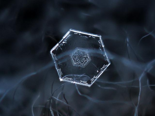 Snowflakes (1)