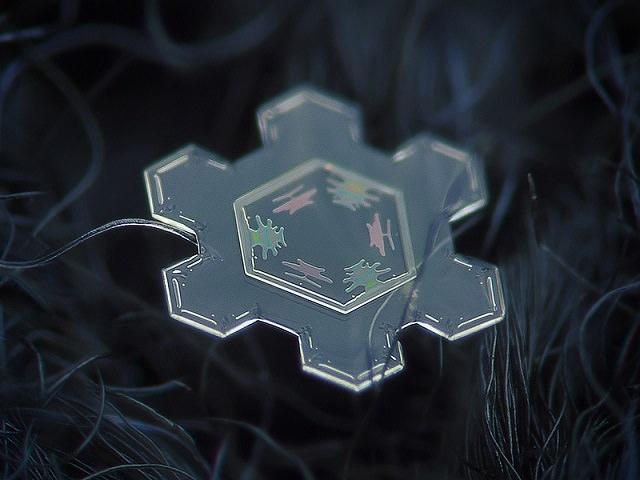 Snowflakes (12)