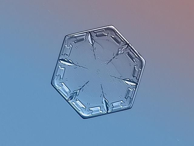 Snowflakes (19)