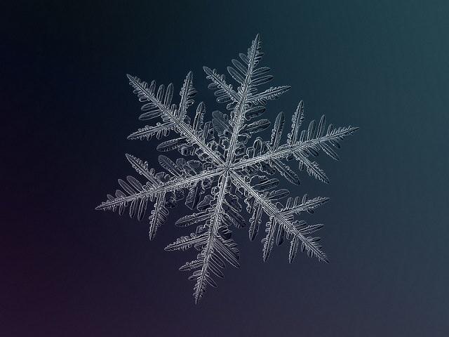 Snowflakes (20)