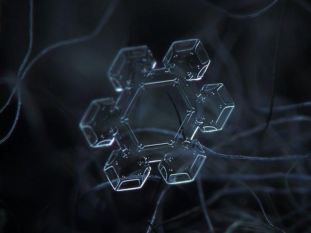 Snowflakes (4)