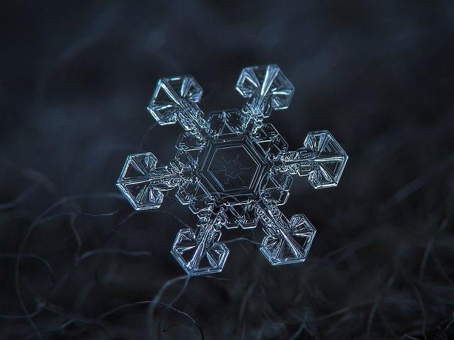 Snowflakes (6)