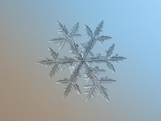 Snowflakes (7)