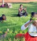 Eat_Grass (1)
