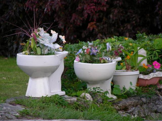 toilet_and_flowers_15
