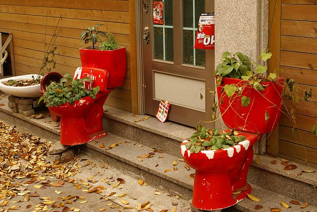 toilet_and_flowers_17