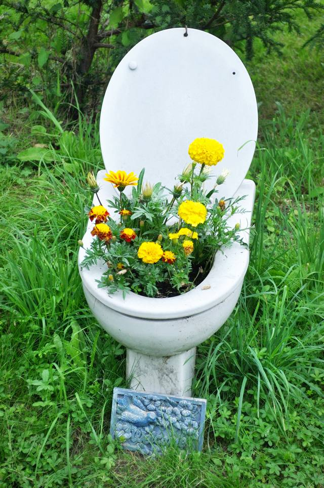 toilet_and_flowers_18