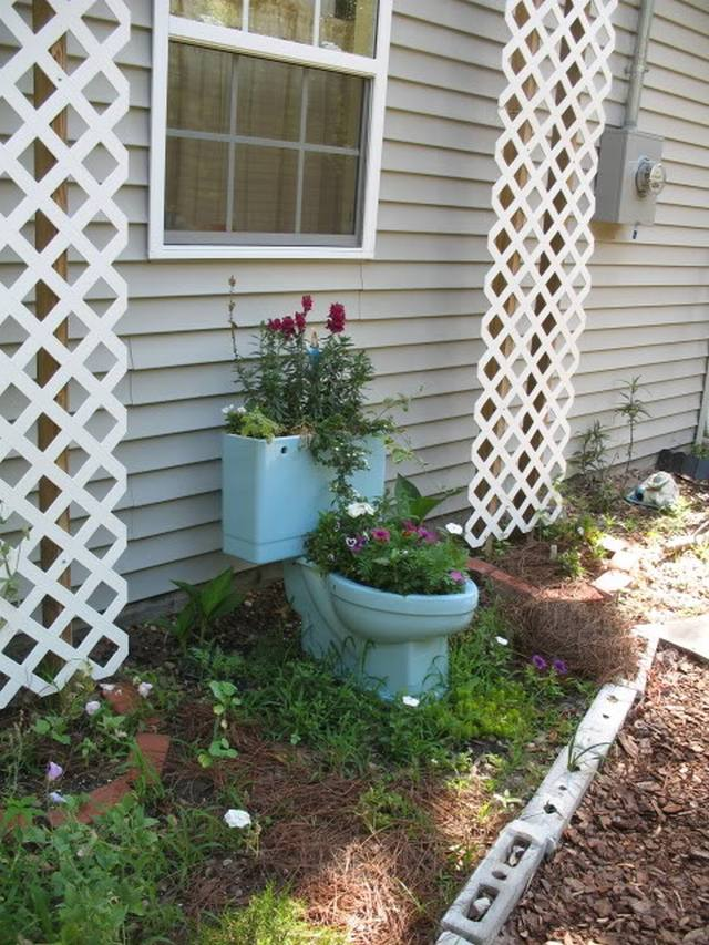 toilet_and_flowers_6