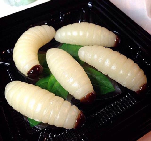 gummy bugs (5)