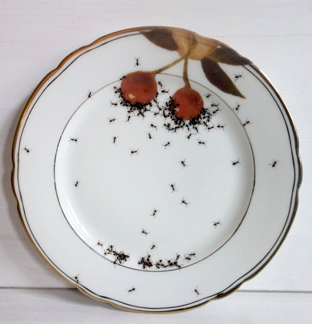 hand-painted ants (4)