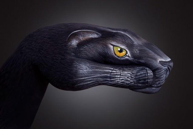 Handart-jaguar
