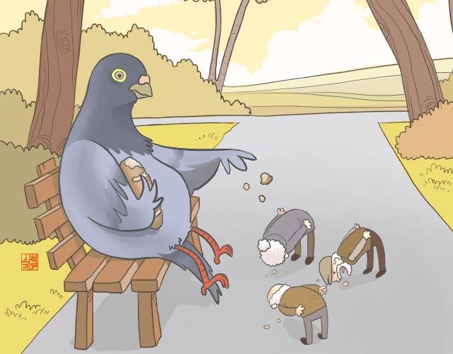 pigeon feeding humans