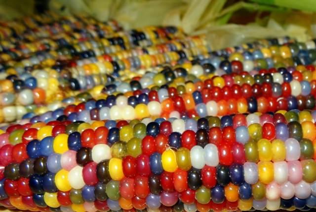 Colorful Glass Bead Corns_three