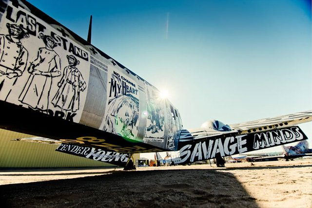 Artists give new life to abondoned planes (14)