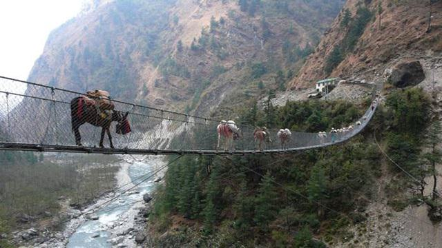 Ghasa Bridge suspends over a river in the southern side of Annapurna circuit. It was built to deplete the rush of hoards of animals from the main streets of town.