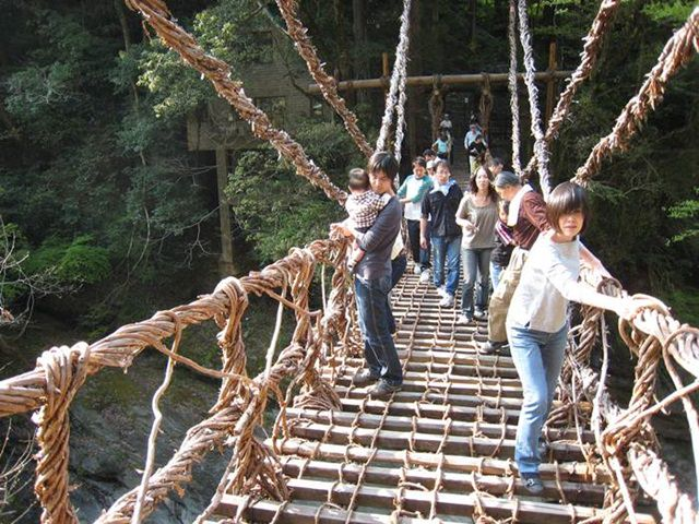 Bridge of Vine is made up of wooden plans tied together with Vines and its hanging over island of Shikoku, the smallest island of Japan near river Iya-gawa.