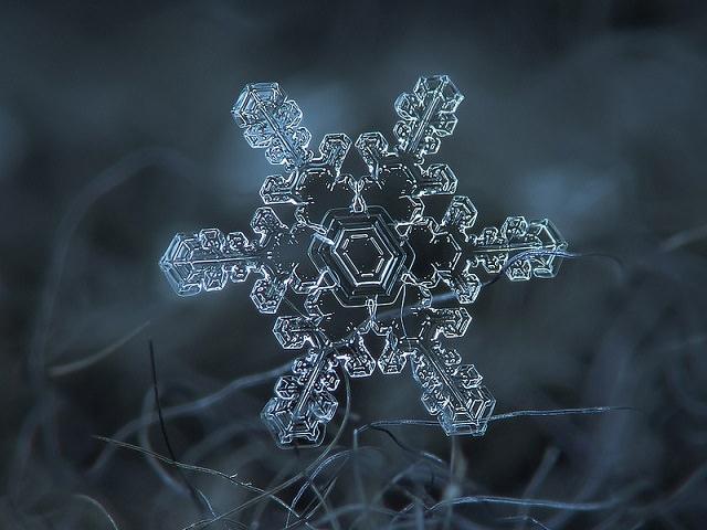 Snowflakes (10)