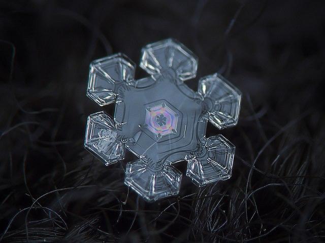 Snowflakes (14)