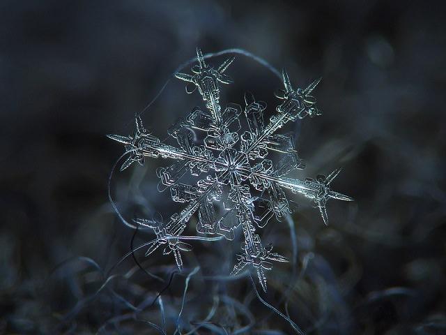 Snowflakes (22)