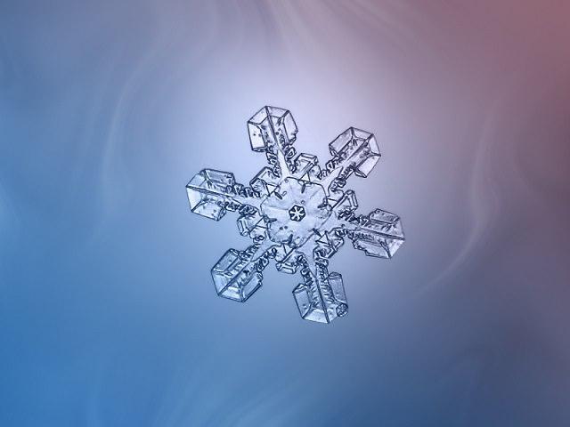 Snowflakes (25)