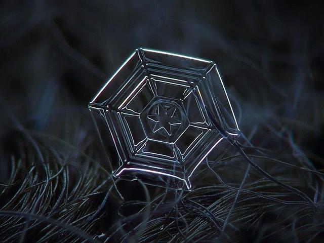 Snowflakes (5)