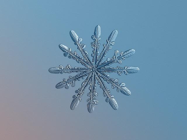 Snowflakes (8)