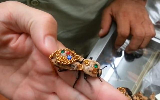 jewelry_living