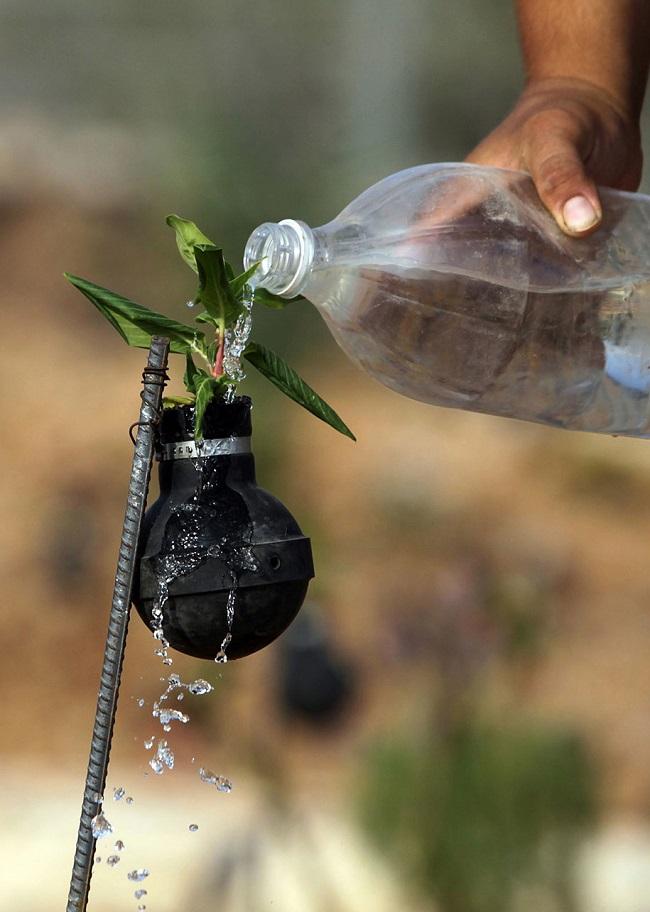 tear-gas-grenade-flower-pots-palestine